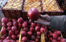 چالش های صادرات سیب آذربایجان غربی پشت دروازه بازارهای جهانی