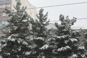 برف بهاری مهمان ناخوانده مردم آذربایجان غربی / تداوم بارشها تا فردا