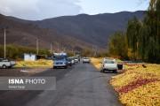ممنوعیت انباشت سیب و میوههای فصلی در کنار جادههای آذربایجان غربی
