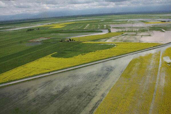 سیل به ۴۰۰۰هکتار از اراضی کشاورزی آذربایجان غربی خسارت زد