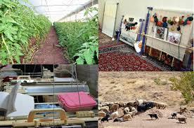 راه اندازی ۱۷ طرح اشتغال زایی روستایی در آذربایجان غربی