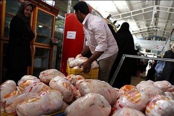کمبود مرغ در آذربایجان غربی/توزیع ۴۰ تن مرغ منجمد آغاز شد